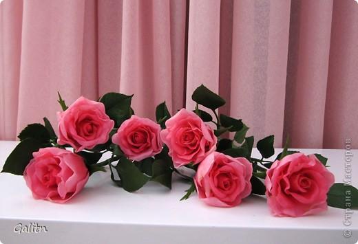 Вот так. без всяких композиций, выставляю мою новую работу. Что бы я не лепила, время от времени меня прибивает на розы.Хочется попробовать разные- открытые. полузакрытые и в разном цвете........ фото 2