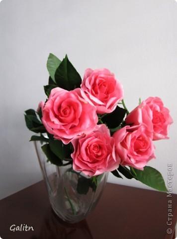 Вот так. без всяких композиций, выставляю мою новую работу. Что бы я не лепила, время от времени меня прибивает на розы.Хочется попробовать разные- открытые. полузакрытые и в разном цвете........ фото 3
