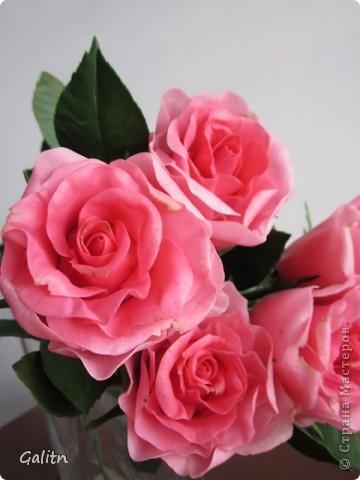 Вот так. без всяких композиций, выставляю мою новую работу. Что бы я не лепила, время от времени меня прибивает на розы.Хочется попробовать разные- открытые. полузакрытые и в разном цвете........ фото 6