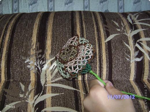 Кружевная роза))) фото 2