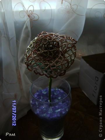 Кружевная роза))) фото 5
