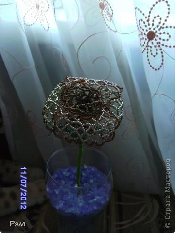 Кружевная роза))) фото 1