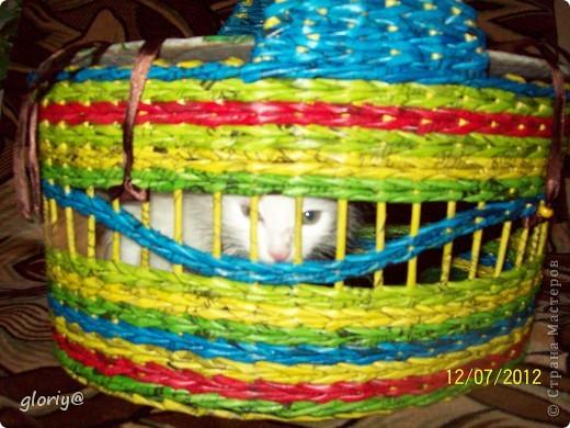 Привет всем, вот решила поделиться следующей работой. Были в гостях, приобрели кошку, и стал вопрос: Как же ее везти домой???? Вот мы не долго думая начали творить.... фото 7