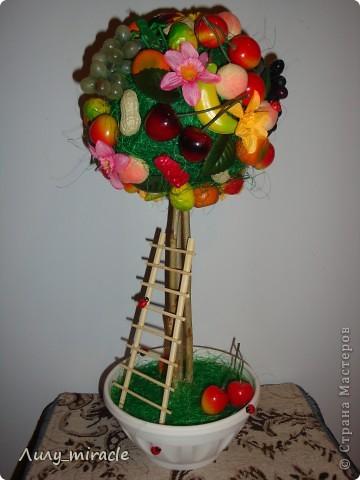 Мои фруктово-ягодные топиарии:  фото 1