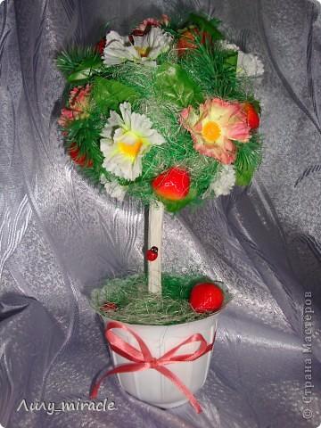 Мои фруктово-ягодные топиарии:  фото 2