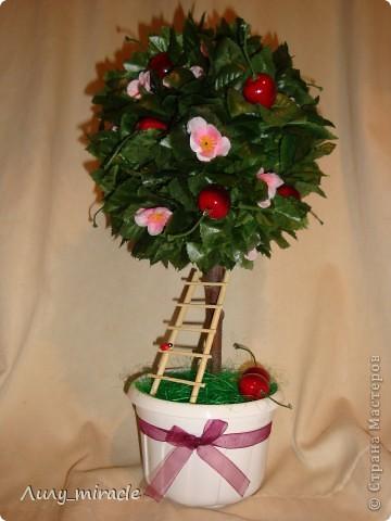 Мои фруктово-ягодные топиарии:  фото 3
