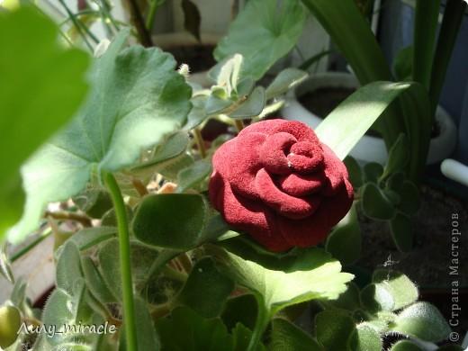 Роза из кожи фото 1