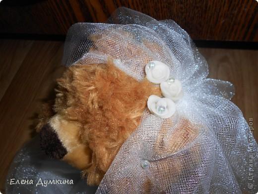 пока готова у меня невеста.жених делается..расскажу по порядку... фото 13