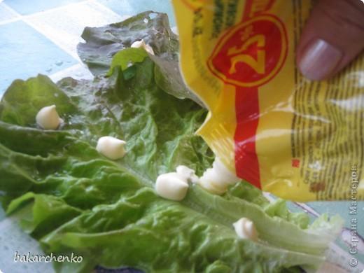 Берем листья салата. Выкладываем их на стол фото 2