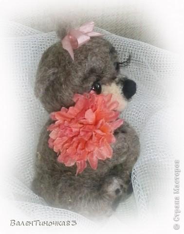 новорожденная мишка-малышка фото 2