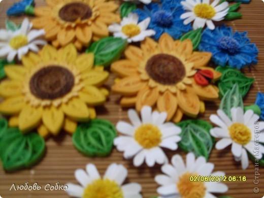 Подсолнушки на день рождения фото 3