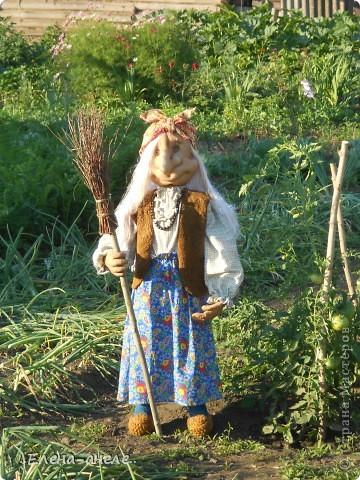 Решила сделать Бабусю-Ягусю на огород. Молодая получилась фото 11