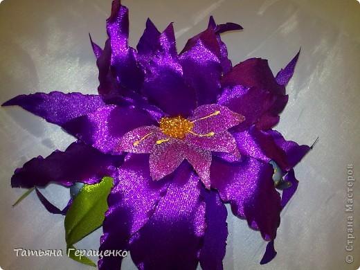 Вот такой цветочек из капроновой тонкой ленты фото 7