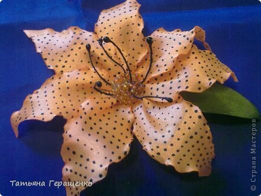 Вот такой цветочек из капроновой тонкой ленты фото 5