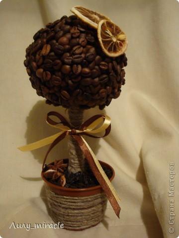 Наверное, каждый мастер уже сотворил хоть один кофейный топиарий. Я делаю их на заказ, например. Вдохновляюсь работами наших мастериц) фото 6