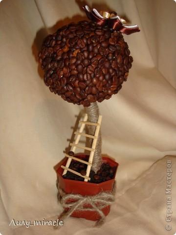 Наверное, каждый мастер уже сотворил хоть один кофейный топиарий. Я делаю их на заказ, например. Вдохновляюсь работами наших мастериц) фото 3