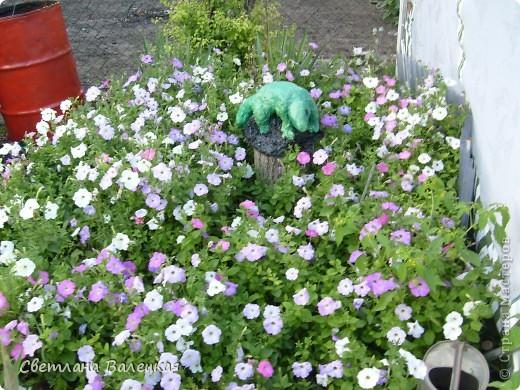 Это наши поделки из монтажной пены и покрышек. Ёжик живёт у нас на клумбе с розами. фото 3