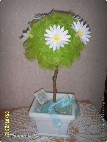 Вот такое ромашковое дерево для сестренки моего мужа!