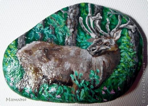 Четласский мишка - миниатюра на камне (сланец, размер 12х9 см) фото 6