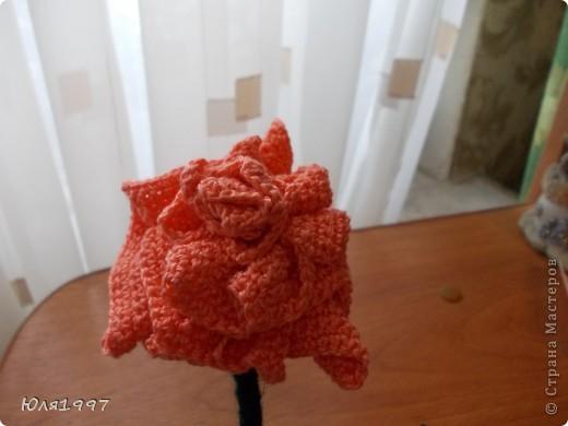 Эта роза связана из журнала мод фото 3