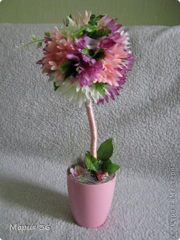 Топиарий или дерево счастья