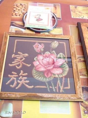 Цветы и животные фото 1
