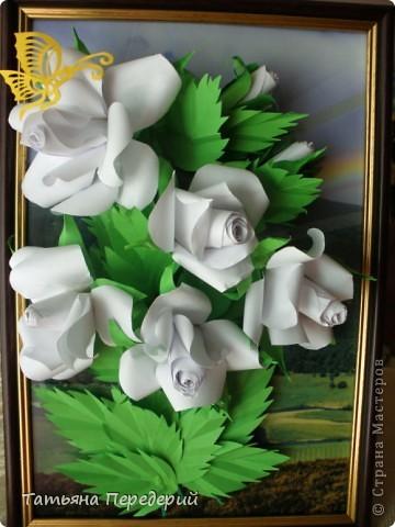 Белые розы - символ чистоты, невинности и искренней любви. Эти цветы говорят о возвышенных, духовных и вечных чувствах. С удовольствием дарю их ВАМ, дорогие жители СМ! фото 1