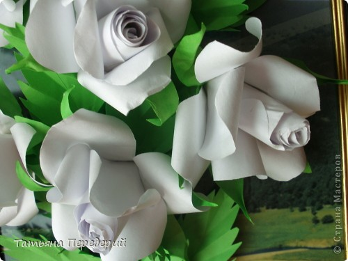 Белые розы - символ чистоты, невинности и искренней любви. Эти цветы говорят о возвышенных, духовных и вечных чувствах. С удовольствием дарю их ВАМ, дорогие жители СМ! фото 4