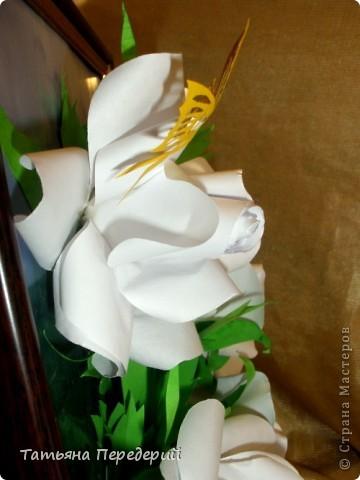 Белые розы - символ чистоты, невинности и искренней любви. Эти цветы говорят о возвышенных, духовных и вечных чувствах. С удовольствием дарю их ВАМ, дорогие жители СМ! фото 5