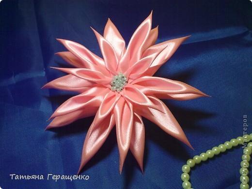 Муж сказал, что этот цветик похож на купальницу... ну пускай будет купальница)) фото 8