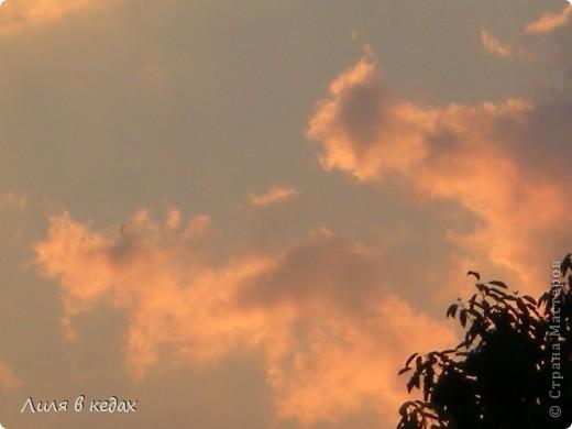 Интересно бывает смотреть в небо, понимая, что там всё началось и там же всё закончится... фото 9
