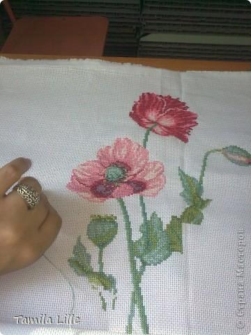 Подарила мне сестричка вышивальный набор цветов аленьких))) Вышивай, говорит, да радуйся... И прибываю я в счастие великом, на работе делом занята важным - красоту в мир привожу (иголочкой да ниточкой колдую над канвой) фото 5