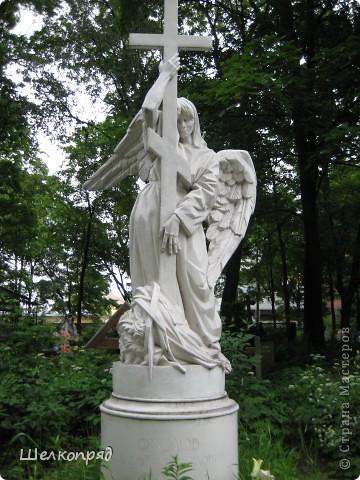 Одно из чудеснейших мест в Санкт-Петербурге - Летний сад, в котором находится Летний дворец Петра Первого. фото 54
