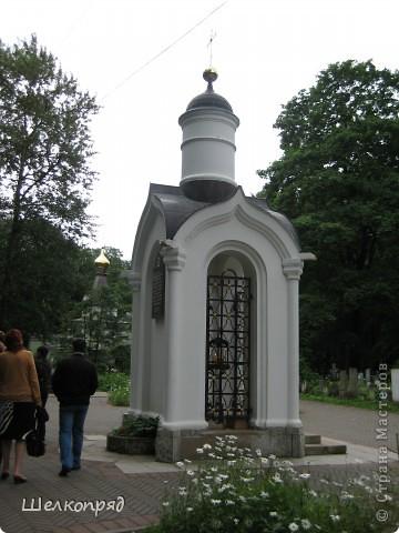 Одно из чудеснейших мест в Санкт-Петербурге - Летний сад, в котором находится Летний дворец Петра Первого. фото 55