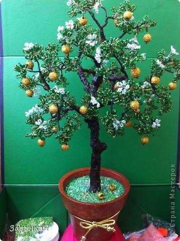 Моя сказочная яблоня) фото 1