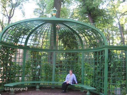 Одно из чудеснейших мест в Санкт-Петербурге - Летний сад, в котором находится Летний дворец Петра Первого. фото 4