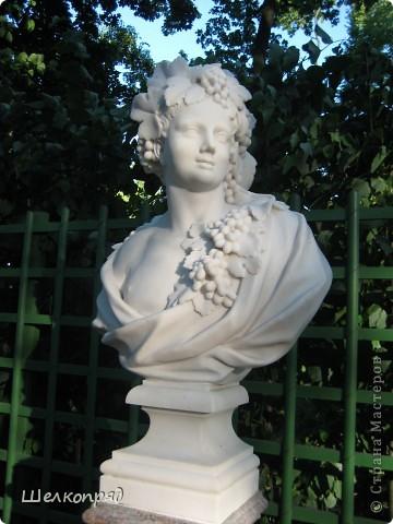Одно из чудеснейших мест в Санкт-Петербурге - Летний сад, в котором находится Летний дворец Петра Первого. фото 6