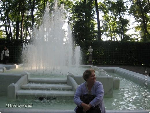Одно из чудеснейших мест в Санкт-Петербурге - Летний сад, в котором находится Летний дворец Петра Первого. фото 8