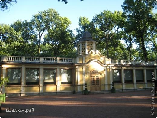 Одно из чудеснейших мест в Санкт-Петербурге - Летний сад, в котором находится Летний дворец Петра Первого. фото 16