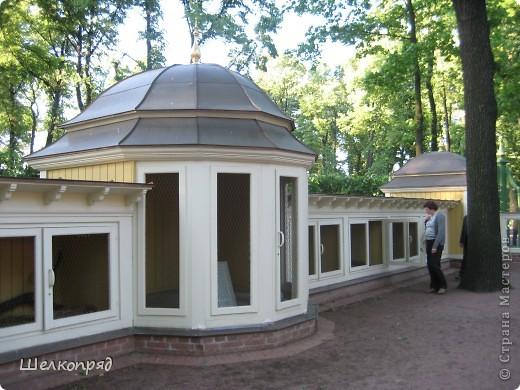 Одно из чудеснейших мест в Санкт-Петербурге - Летний сад, в котором находится Летний дворец Петра Первого. фото 17