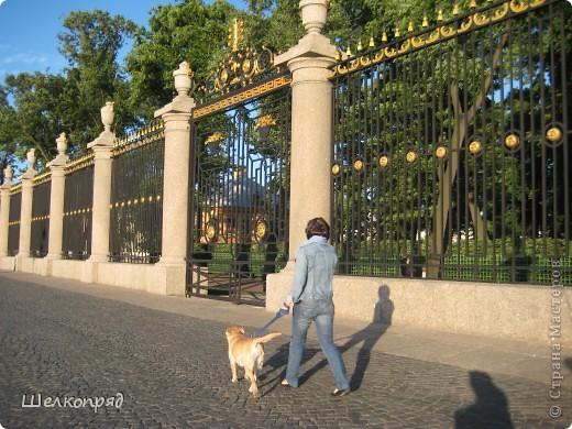 Одно из чудеснейших мест в Санкт-Петербурге - Летний сад, в котором находится Летний дворец Петра Первого. фото 1