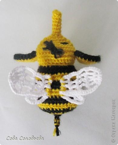 Пчелослон... или Слоношмель? фото 2