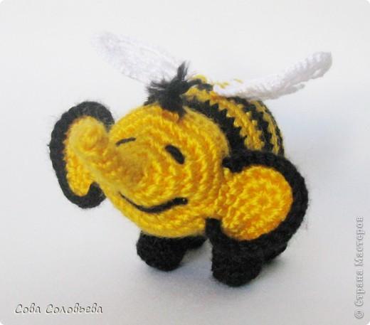 Пчелослон... или Слоношмель? фото 5