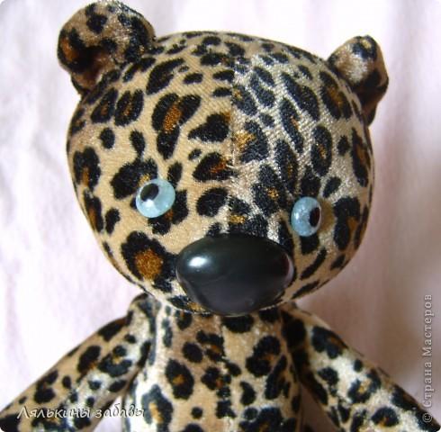 вообще то мы-леопарды,мы..... а так,мы дико,ну просто дико обиженные....нас на выставку забыли,теперь мы только через неделю пойдем,и будем дуться......да-с,будем-с.... фото 2