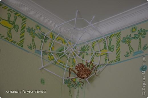 Дебют) Самое первое плетение фото 2