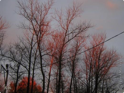 Очень люблю смотреть на небо и самые яркие моменты оставлять в памяти при помощи фотоаппарата.  фото 5