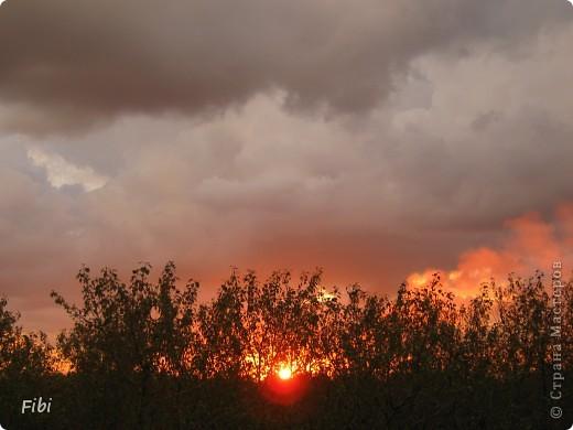 Очень люблю смотреть на небо и самые яркие моменты оставлять в памяти при помощи фотоаппарата.  фото 13
