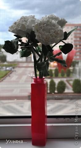 Белые розы из CLAY CRAFT BY DECO фото 1