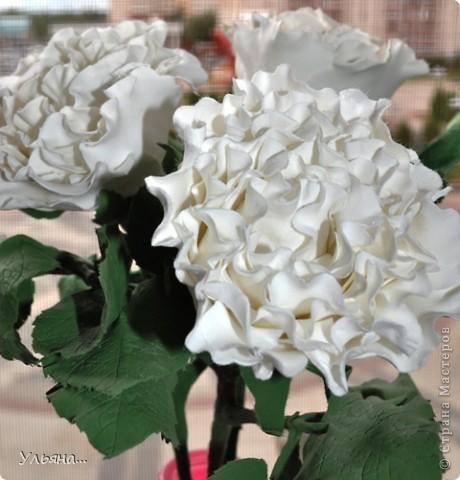 Белые розы из CLAY CRAFT BY DECO фото 2
