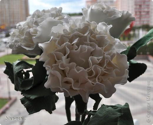 Белые розы из CLAY CRAFT BY DECO фото 3